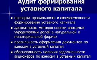 Аудит учредительных документов и формирования уставного капитала