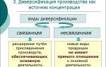 Диверсификация производства предприятия