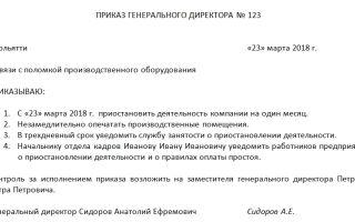 Приказ о приостановлении деятельности ооо. образец, бланк 2018 года