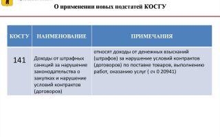 Появились новые подстатьи к статье 230 косгу