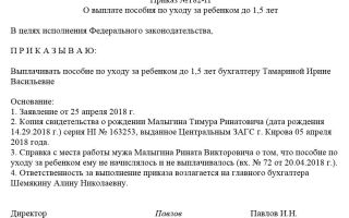 Образец приказа о назначении пособия по уходу за ребенком до 1.5 лет