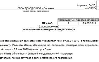 Приказ о назначении коммерческого директора. образец, бланк 2018