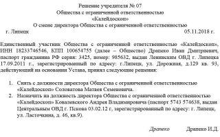 Решение учредителя о смене директора ооо. образец 2018 года