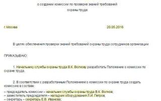 Образец приказа о назначении комиссии по проверке знаний по электробезопасности
