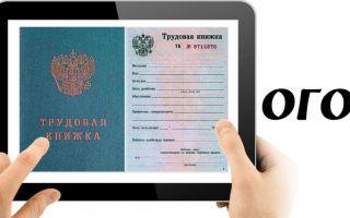 Электронные трудовые книжки могут быть внедрены в 2018 году