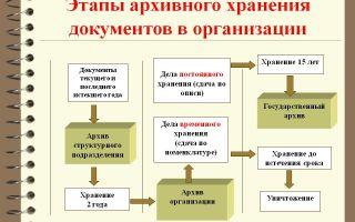 Организация и правила хранения документов в архиве