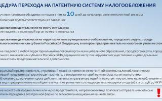 Самозанятые граждане. деятельность, закон, патент