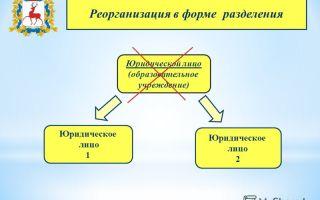 Реорганизация юридического лица в форме разделения