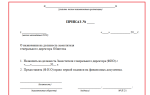 Приказ о назначении заместителя директора ооо. образец и бланк 2018 года