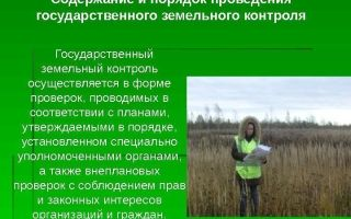 Порядок проведения земельного контроля