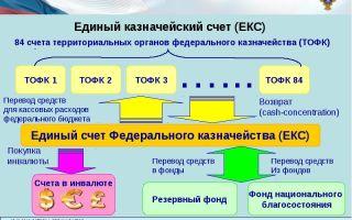 Казначейский счет. как открыть, как работать