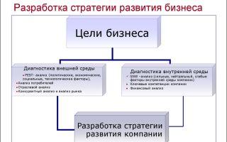 Стратегия развития компании. разработка