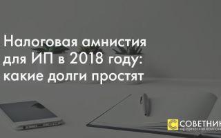 Налоговая амнистия в 2018 году для ип